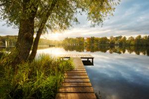 See, Wasser, Fünfseenland, Weßlinger See, Steg, Baum, Stimmung, Gegenlicht, Sonnenstrahlen, Morgen,