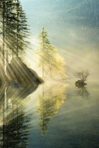 Hintersee, lake, water, reflection, light, rays, tree, autumn, fog, mood,