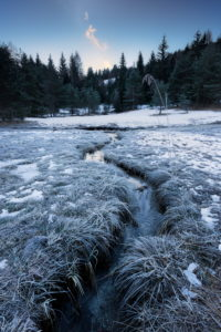 Winter, Bachlauf, Wald, Tannen, Reif, Eis, Schnee, Kälte,