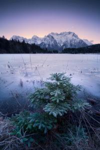 Berge, Alpen, Karwendel, See, gefroren, Ufer, Tanne, Reif, kalt, Mond, Himmel,