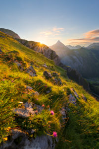 Austria, Karwendel, Tyrol, Sonjoch, Alps, mountain, mountains, sunrise, star, back light, rock, meadow, flowers, mood, river, valley, Ahornboden, panorama, clouds, light, scenery, summit, picturesque