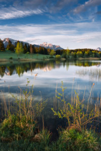 Bavaria, morning on a small idyllic lake in the Allgäu region, Alps in the background, riparian vegetation in the foreground, water reflection