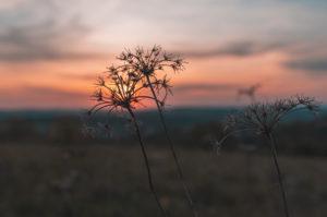 Sunset, Swabian Jura, Baden-Württemberg, Germany, Europe
