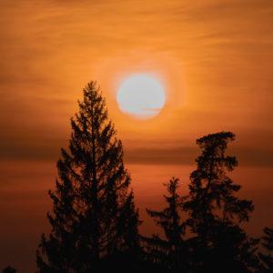 Schwäbischen Alb, Sonnenuntergang zwischen den Baumkronen, Zollernalbkreis, Baden-Württemberg, Deutschland, Europa