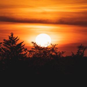Swabian Alb, sunset between the tree tops, Zollernalbkreis, Baden-Württemberg, Germany, Europe