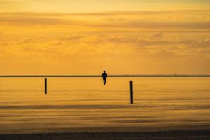Sandbank, Westerherversand, Person, Silhouette, Sonnenuntergang, Sandsturm, Wattenmeer, Eiderstedt in Schleswig-Holstein, Nordsee, Deutschland, Europa