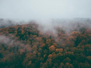 Herbst auf der Schwäbischen Alb, Wald, Nebel, Luftaufnahme, Baden-Württemberg, Deutschland, Europa