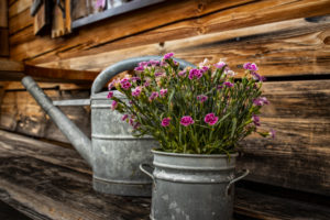 Quaint alp in the Alps, decoration, watering can, flowers, Berchtesgadener Land, Bavaria, Germany