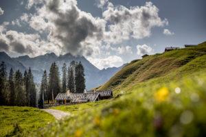 Idyllische Landschaft mit Almen, Loferer Steinberge, bewirtschaftete Alm, Wiese, Sommer, Bayern, Salzburger Land