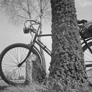 A bicycle leaning on a tree at Luneburg Heath area, Germany 1930s.