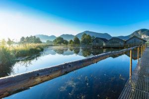 Deutschland, Bayern, Bayerische Alpen, Kochel, Morgenstimmung am Kochelsee mit Blick auf die Bootshäuser