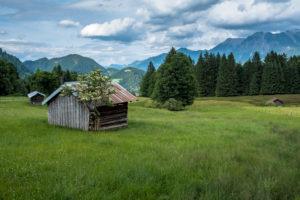 Deutschland, Bayern, Allgäu, Oberstdorf, Blick über die Wiesen auf die Oberstdorfer Bergwelt