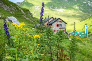Österreich, Vorarlberg, Lechquellengebirge, Dalaas, Ravensburger Hütte, Eisenhut mit Ravensburger Hütte im Hintergrund
