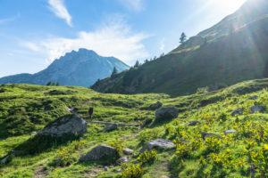 Austria, Vorarlberg, Lechquellen Mountains, Dalaas, hiker in the Lechquellen Mountains