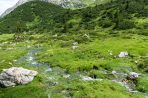Austria, Vorarlberg, Lechquellen Mountains, Dalaas, source of Lech