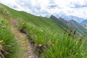 Europa, Österreich, Tirol, Osttirol, Kals am Großglockner, Blick auf den Sudetendeutschen Höhenweg zwischen Hohem Tor und Dürrenfeldscharte mit der Schobergruppe im Hintergrund