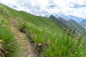 Europe, Austria, Tyrol, East Tyrol, Kals am Großglockner, view of the Sudeten German High Trail between Hohem Tor and Dürrenfeldscharte with the Schobergruppe in the background