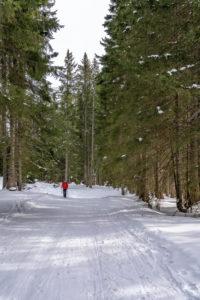 Europa, Österreich, Salzburger Land, Werfen, Skitourengeher im Aufstieg zur Ostpreussenhütte