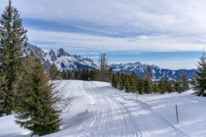 Europa, Österreich, Berchtesgadener Alpen, Salzburg, Werfen, Ostpreussenhütte, Wanderer auf einem verschneiten Hochplateau mit Blick auf das Tennengebirge