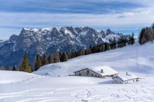 Europa, Österreich, Berchtesgadener Alpen, Salzburg, Werfen, Ostpreussenhütte, Blühnteckalm vor der Kulisse des Tennengebirges