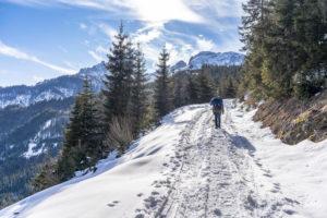 Europa, Österreich, Berchtesgadener Alpen, Salzburg, Werfen, Ostpreussenhütte, Bergwanderer auf einem verschneiten Forstweg im lichten Bergwald