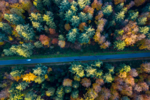 Aerial view street, Swabian Forest in autumn, Rems-Murr-Kreis, Baden Württemberg, Germany