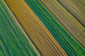 Aerial view arable land, Swabian Forest in autumn, Rems-Murr-Kreis, Baden Württemberg, Germany