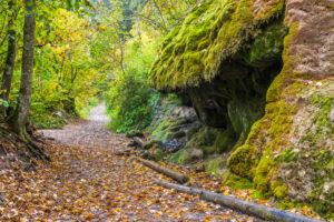 Wutach Gorge, Black Forest, Baden-Württemberg, Germany