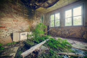 decayed hotel room in an abandoned recreation home with fern