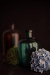 Hortensie und Glasflaschen