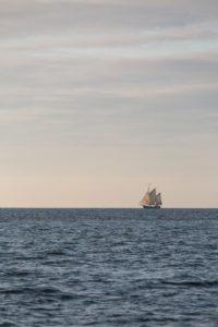 Traditional sailors on the horizon on the Greifswalder Bodden