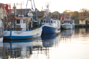 Fischerboote im Hafen von Freest, Mecklenburg-Vorpommern, Deutschland