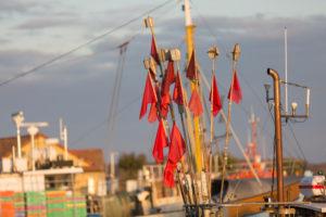 Fischerfähnchen im Hafen von Freest, Mecklenburg-Vorpommern, Deutschland