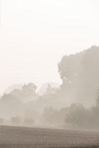neblige Landschaft in Mecklenburg-Vorpommern