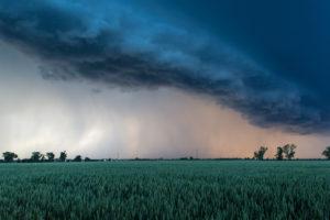 Gewitter über einem Feld