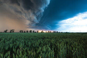 Thunderstorm over a field