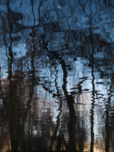 Water reflection in a lake in Brandenburg,