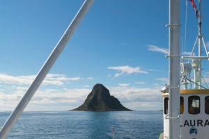 Boat trip to bird rocks of the island of Bleiksoya, Vesteralen, Norway, Scandinavia