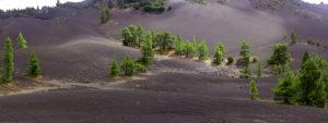 La Palma island, El Pilar, lava scenery, the Canaries, Spain, Europe, panorama, panoramic picture