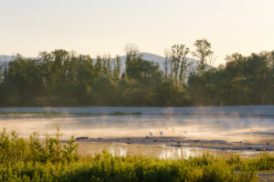 Gravel pond at sunrise, nature reserve Isarmündung, at Plattling, Lower Bavaria, Bavaria, Germany