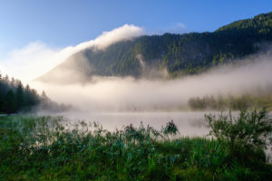 Fog at Ferchensee, near Mittenwald, Werdenfelser Land, Wetterstein Mountains, Upper Bavaria, Bavaria, Germany
