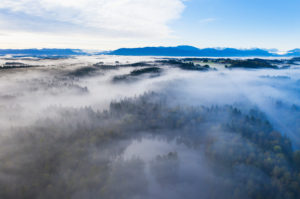 Fog over forest and pond, Birkensee bei Geretsried, Alpine chain, Alpine foothills, drone photography, Upper Bavaria, Bavaria, Germany