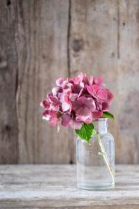 Kleine Glasvase mit rosa Hortensienblüte auf einem alten Holztisch