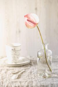 Stillleben mit rosa Anthurie in einer Glasvase auf Tisch mit hellem Leinentuch und Geschirr