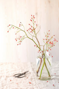 Autumn still life with rosehip branches in a simple glass vase