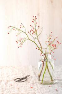 Herbstliches Stillleben mit Hagebutten Zweigen in einer schlichten Glasvase
