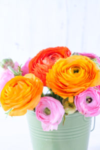 Close-up of colorful ranunculus bouquet