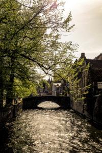 Gracht in Bruges in the golden evening light