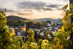 View from a vineyard over the village of Drohn.