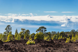 The plateau of El Teide National Park overlooking the low-lying cloud cover.